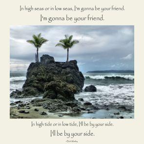 Hide Tide or Low Tide